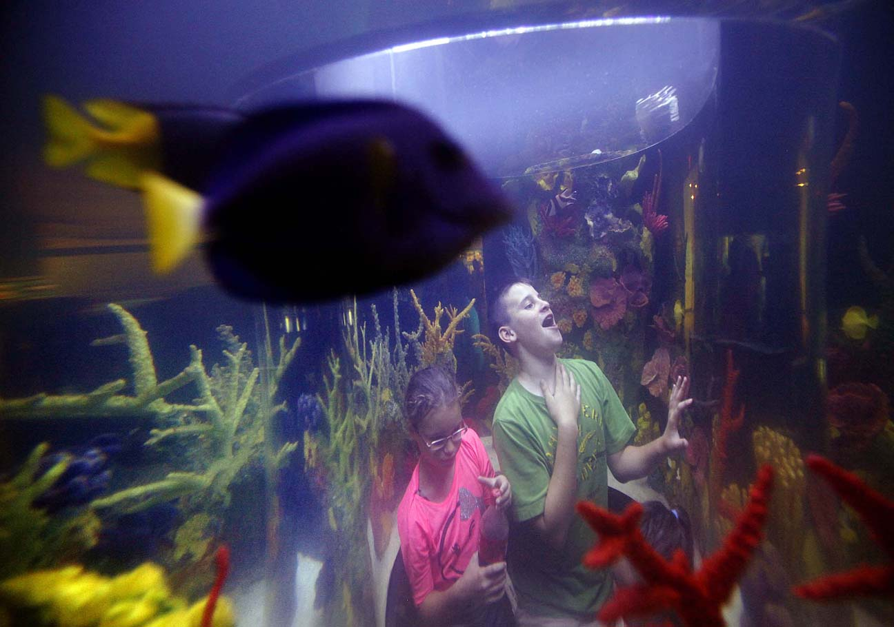 Expanded science center opens with free community day b b Aquarium free days